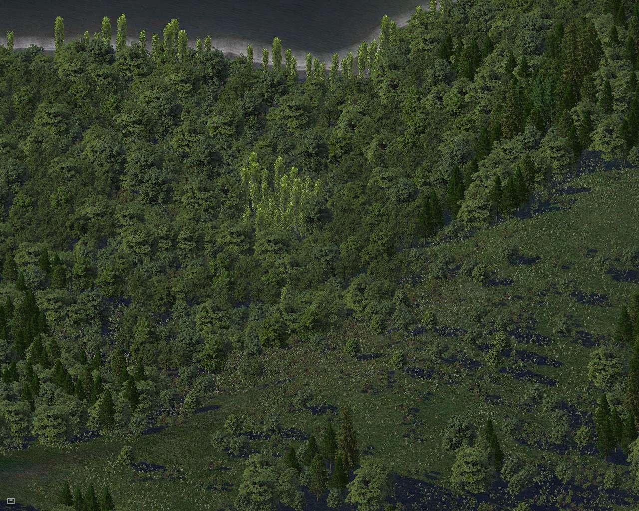 trees4%208.jpg?psid=1