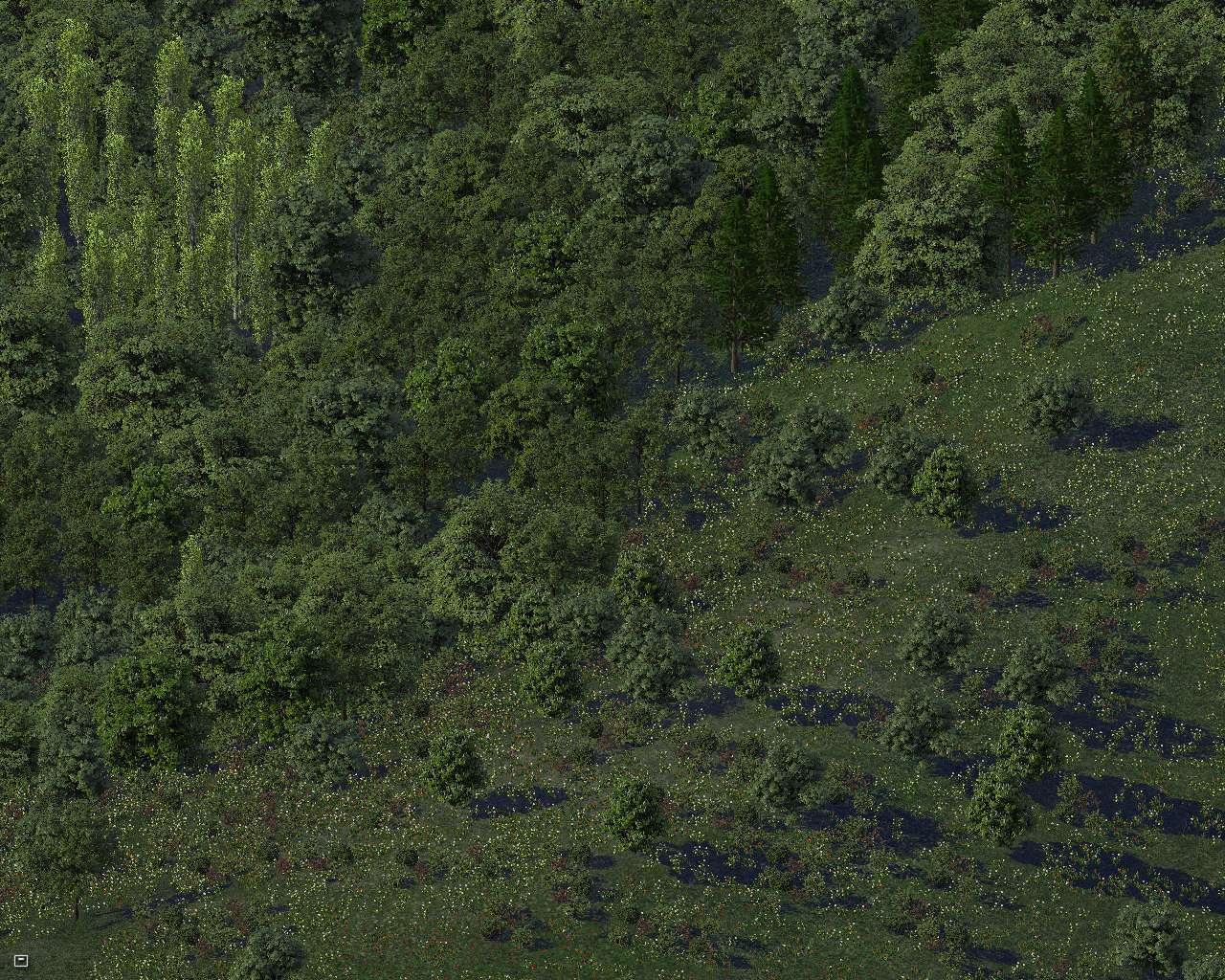 trees4%209.jpg?psid=1
